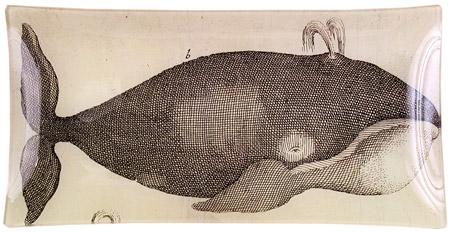 Spoutingwhale